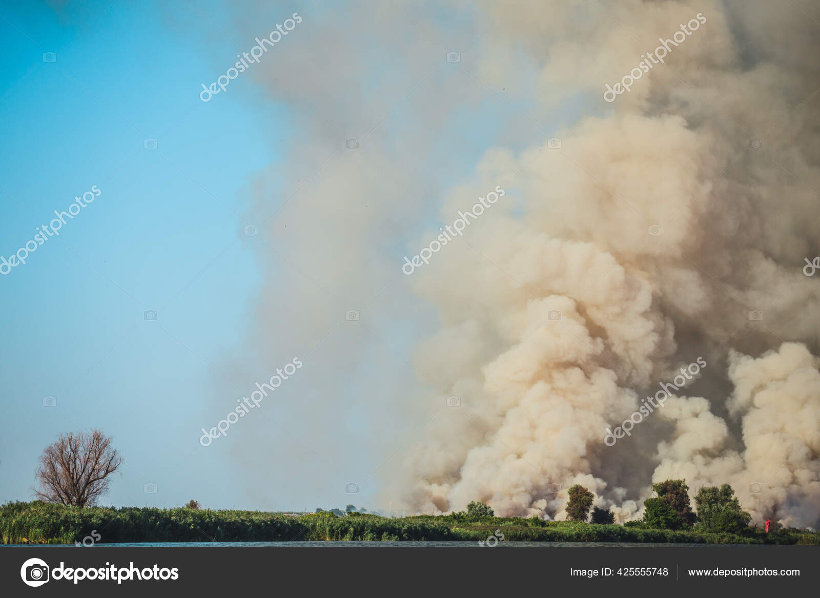 Large clouds of smoke, fire in nature
